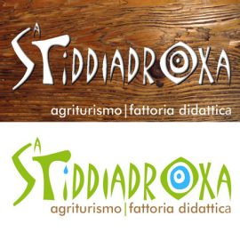 Stiddiadroxa